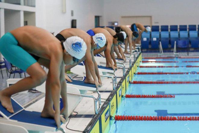 دروس السباحة  للكبار والصغار في نادي دبي لاصحاب الهمم  | أكاديمية دولفين