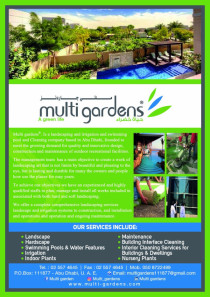 Landscaping, irrigation, swimming pool and cleaning services