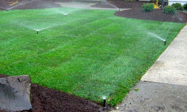 Garden irrigation services in Abu Dhabi, UAE