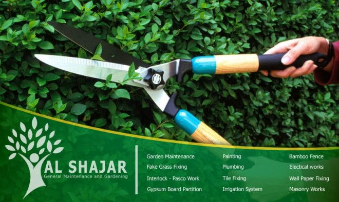 Monthly Garden Maintenance Service In Abu Dhabi