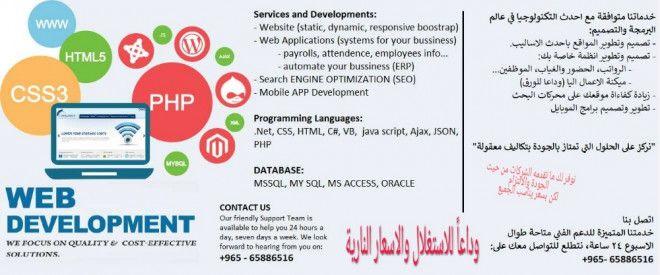 Systems, Web, mobile Development
