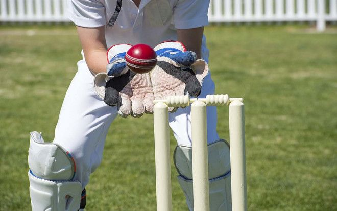 Cricket classes for kids in Abu Dhabi in Mohammed Bin Zayed City|  Cleopatra Cricket Academy