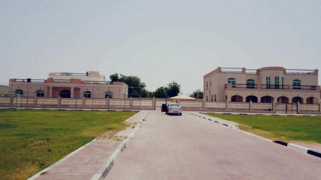 Duplex Villa and Ground Villa Suitable for commercial business at Al Jimi Alain