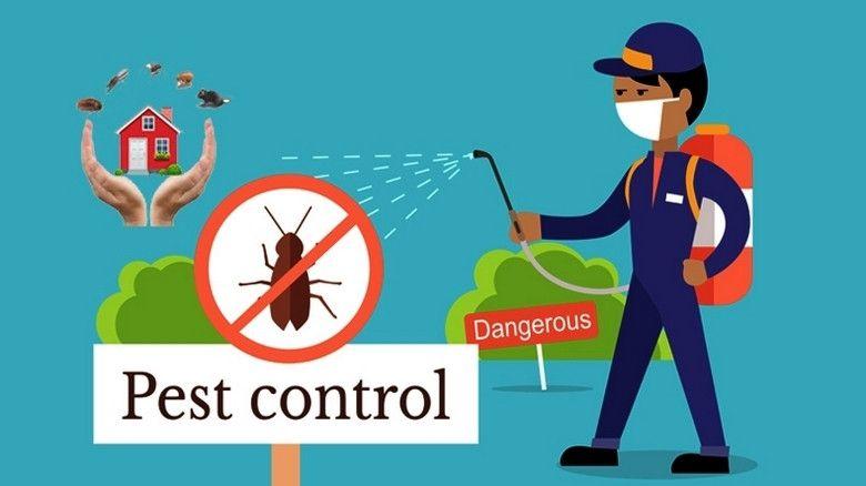 10 hidden secrets for pest control