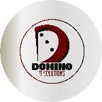 Domino Ict