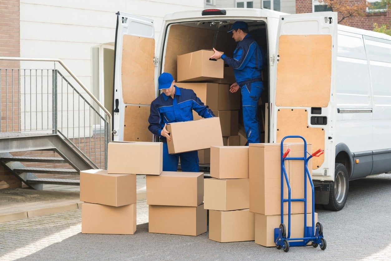Expert Movers 2