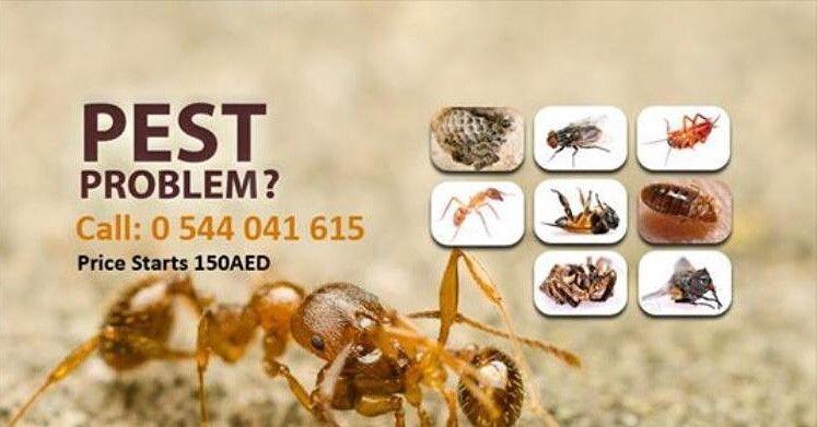 Alwiqaya  Pest Control
