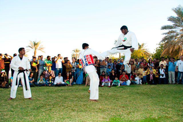 Golden Fist International Academy 1