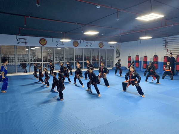 Golden Eagle Martial Arts Academy 3