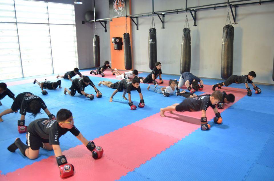Tiger Kickboxing Academy 2