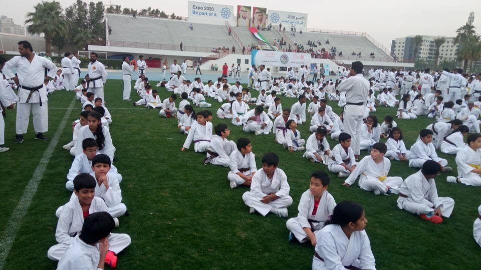 Golden Falcon Karate Center 0