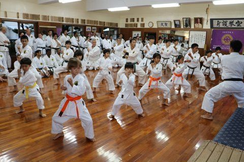United Karate  Academy 2