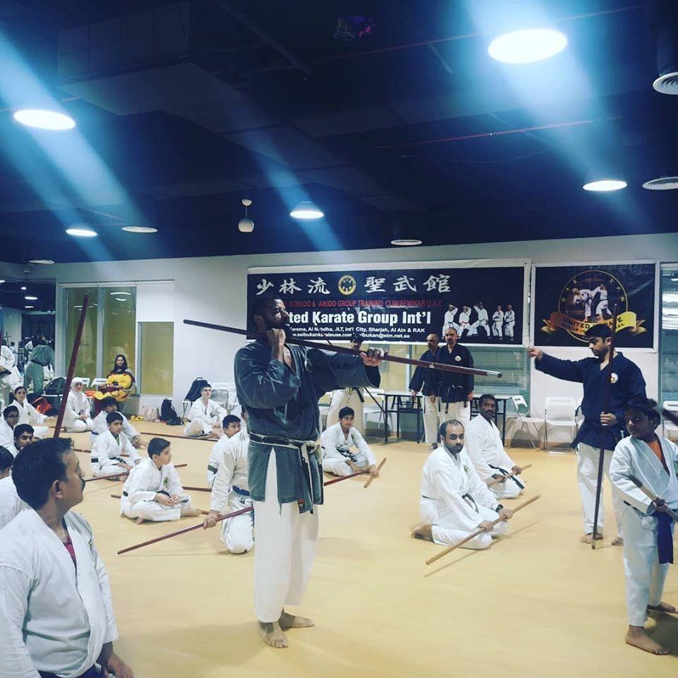 Seibukan Karatedo Academy 0