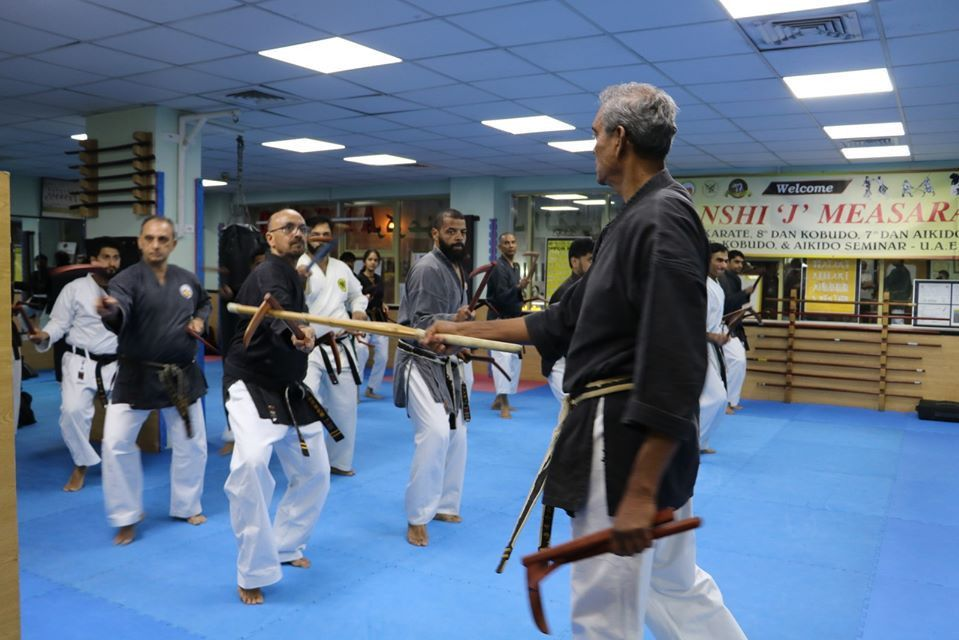 Seibukan Karatedo Academy 1