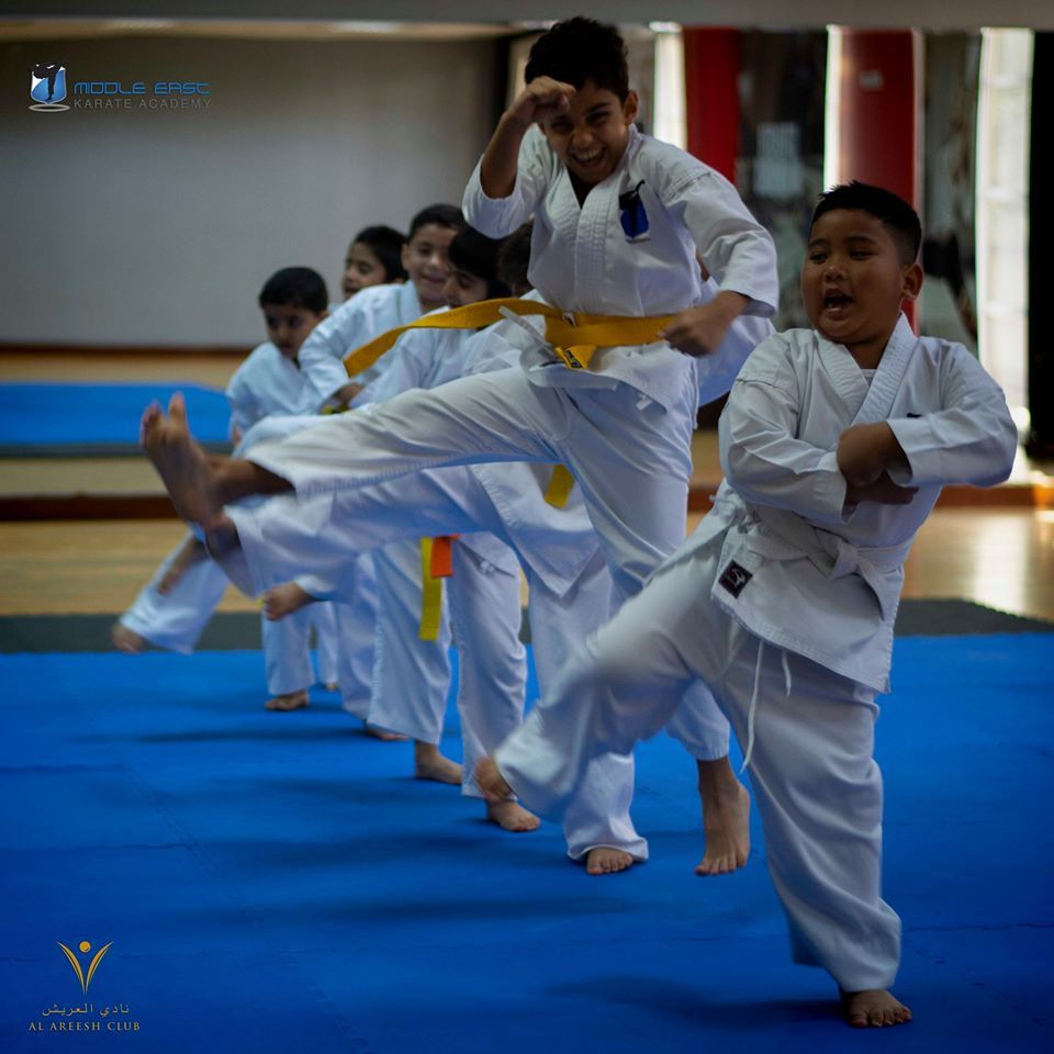 Middle East Karate Academy 2