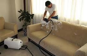 Star Creativity Pest Control And Cleaning Services