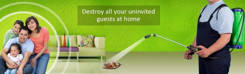 AL RASA PEST CONTROL & BLDG. CLEANING SERVICES 0