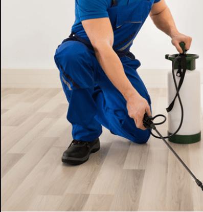AL RASA PEST CONTROL & BLDG. CLEANING SERVICES 2