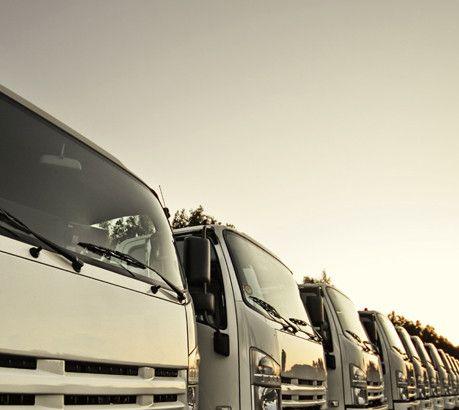 Signature  Diesel Trading 3