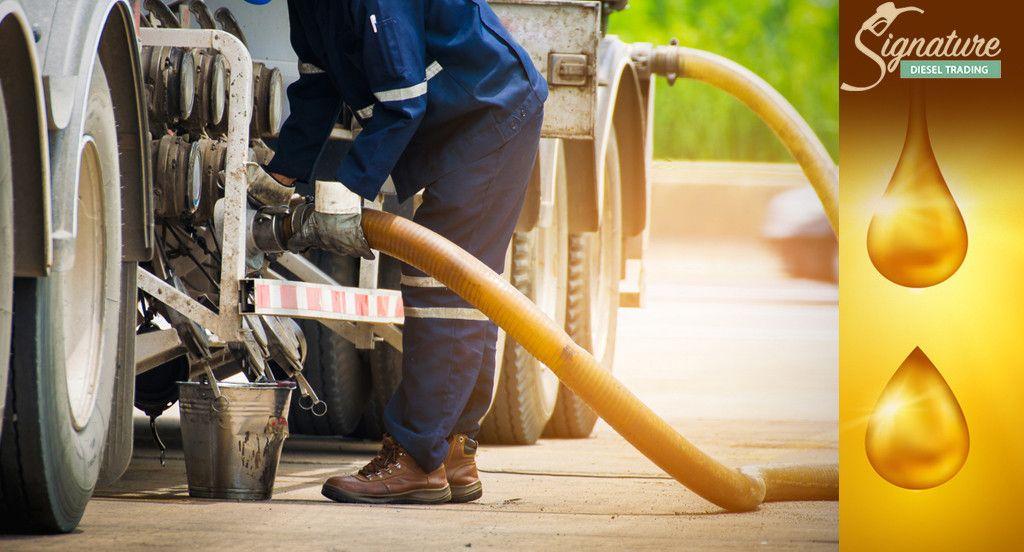 Signature  Diesel Trading 5