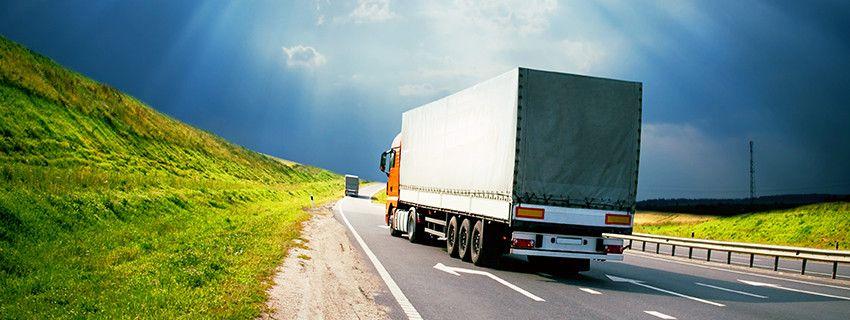 Trans Line Cargo Shipping  0