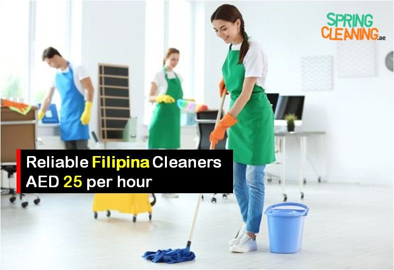 Spring Cleaning Maid Services  0