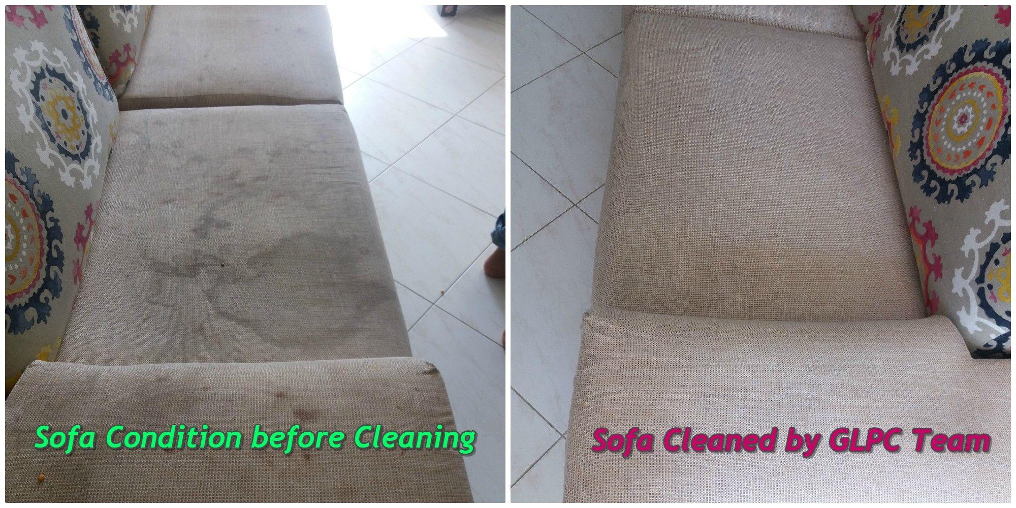 Golden Leaf Pest Control & Cleaning 0