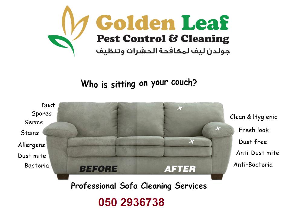 Golden Leaf Pest Control & Cleaning 5
