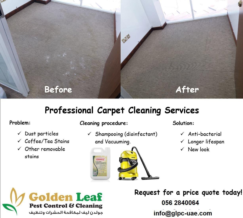 Golden Leaf Pest Control & Cleaning 6