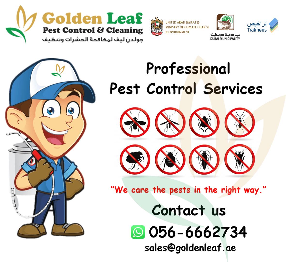Golden Leaf Pest Control & Cleaning 7