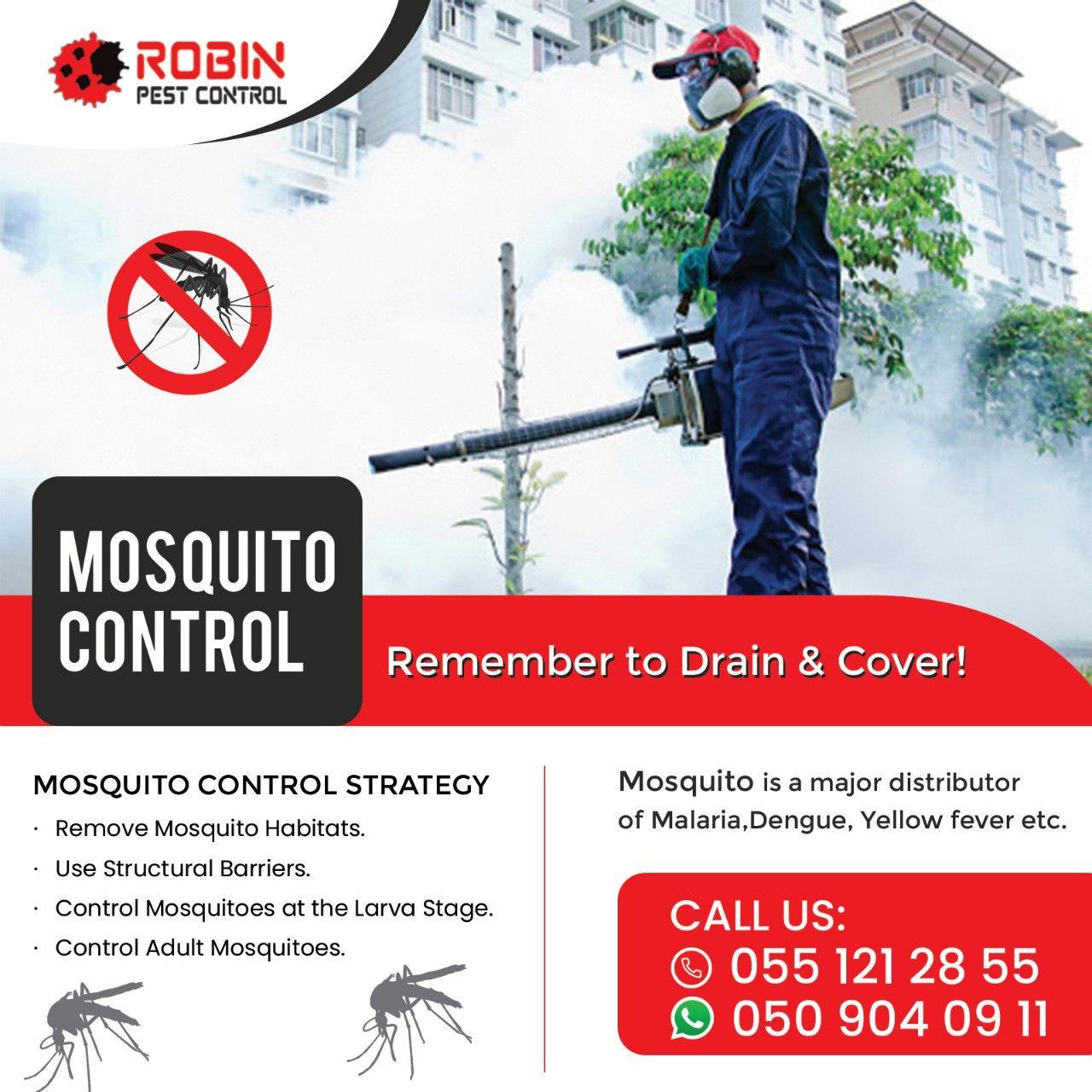 Robin Pest Control 1