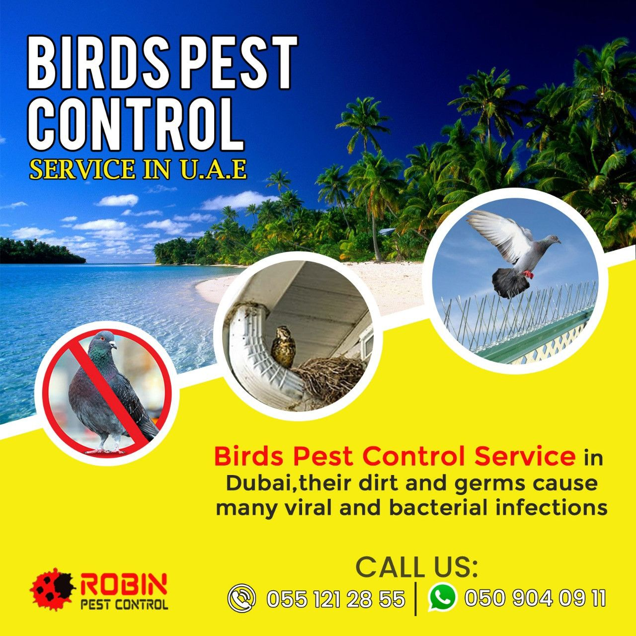 Robin Pest Control 3