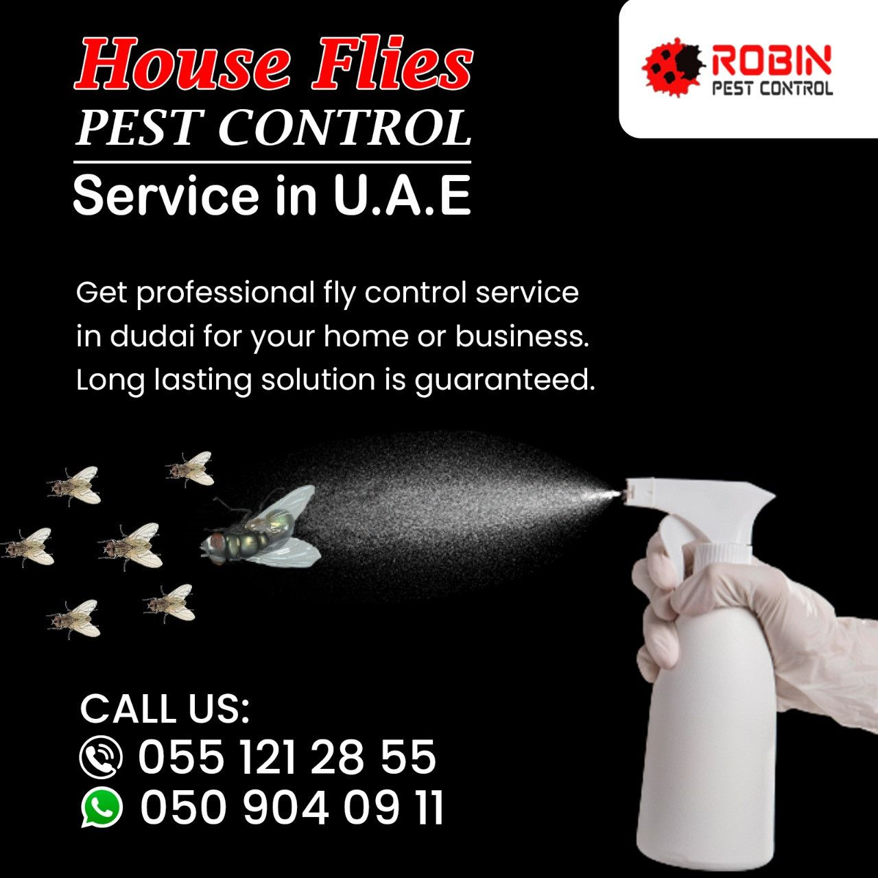 Robin Pest Control 5