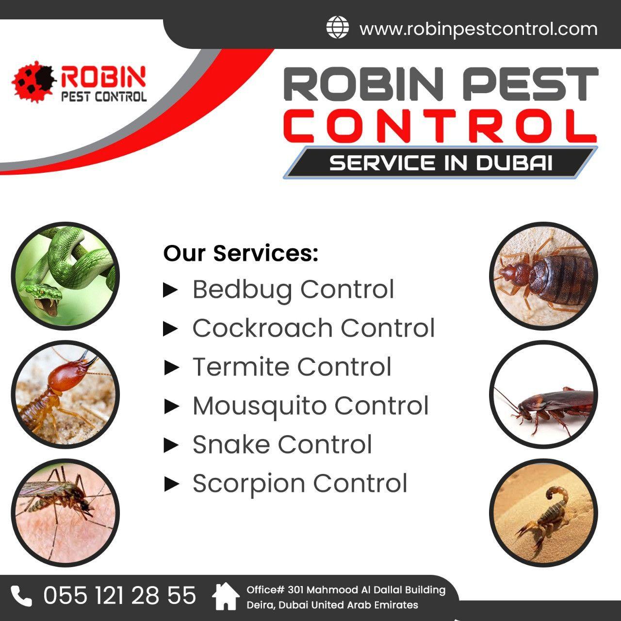 Robin Pest Control 9
