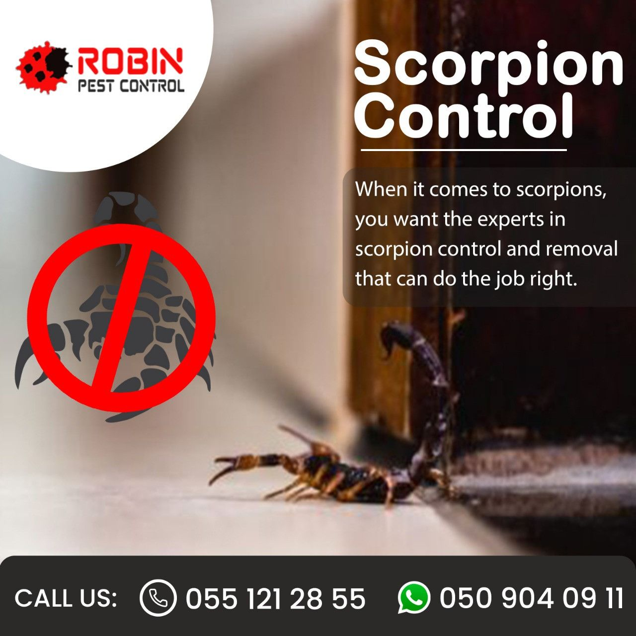 Robin Pest Control 7