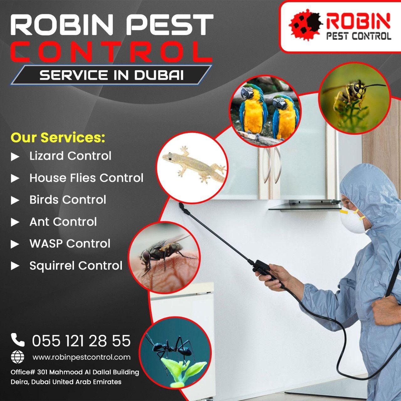 Robin Pest Control 13
