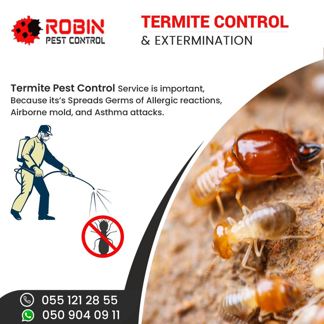 Robin Pest Control 12