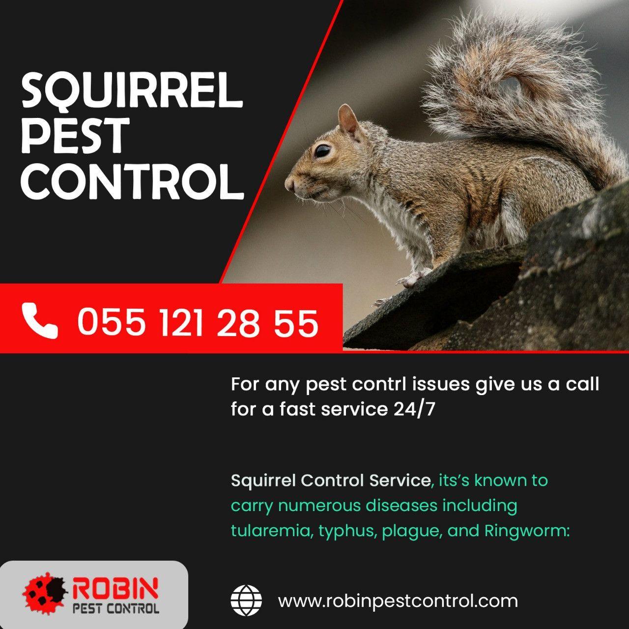 Robin Pest Control 14
