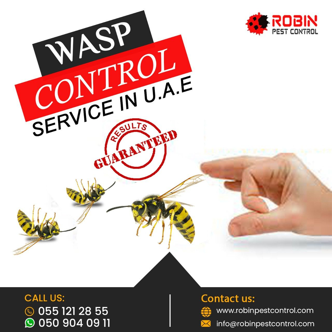 Robin Pest Control 15
