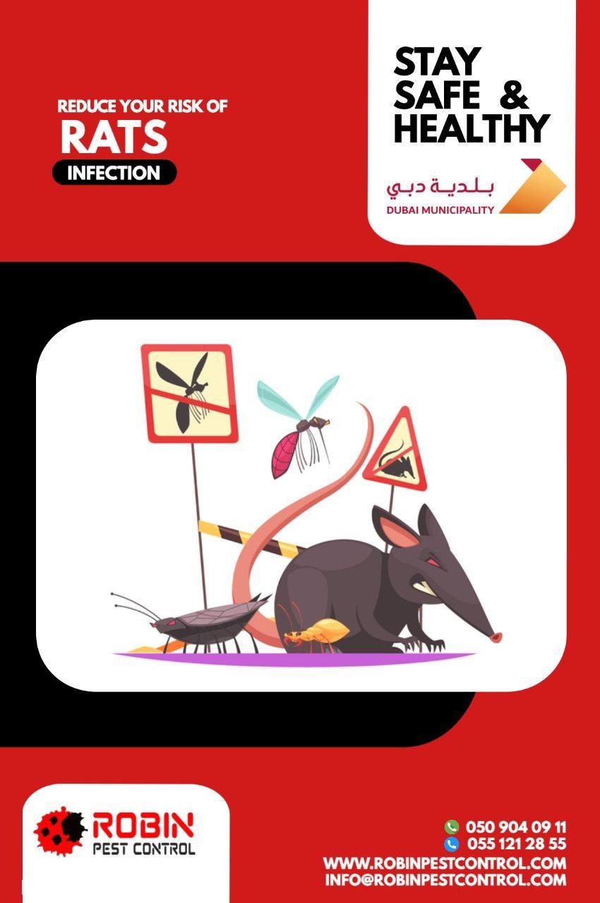 Robin Pest Control 34